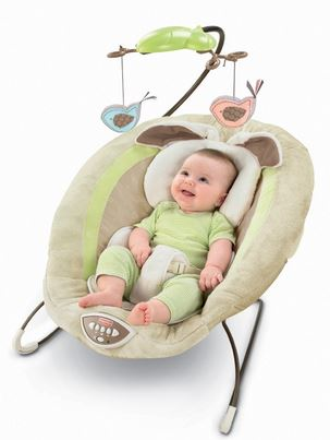 Best Baby Bouncer Seat in 2017Reviews and Ratings